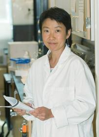 Professor Catherine Chan