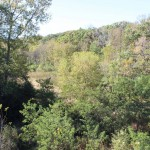 View from the bridge: flat landscape with lots of trees.
