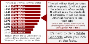 white genocide numbers