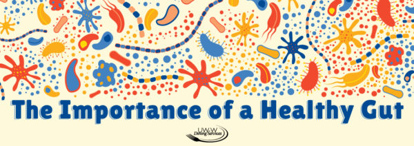 The Importance of a Healthy Gut