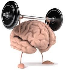brain weight image